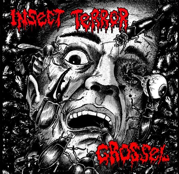 Insect Terror vs. Grossel - Split MLP