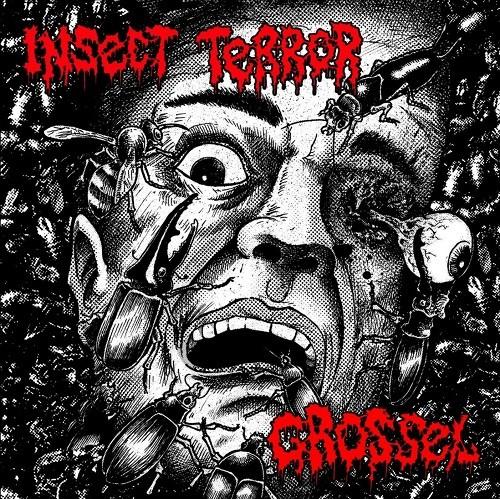 Insect Terror vs. Grossel - single sided split LP